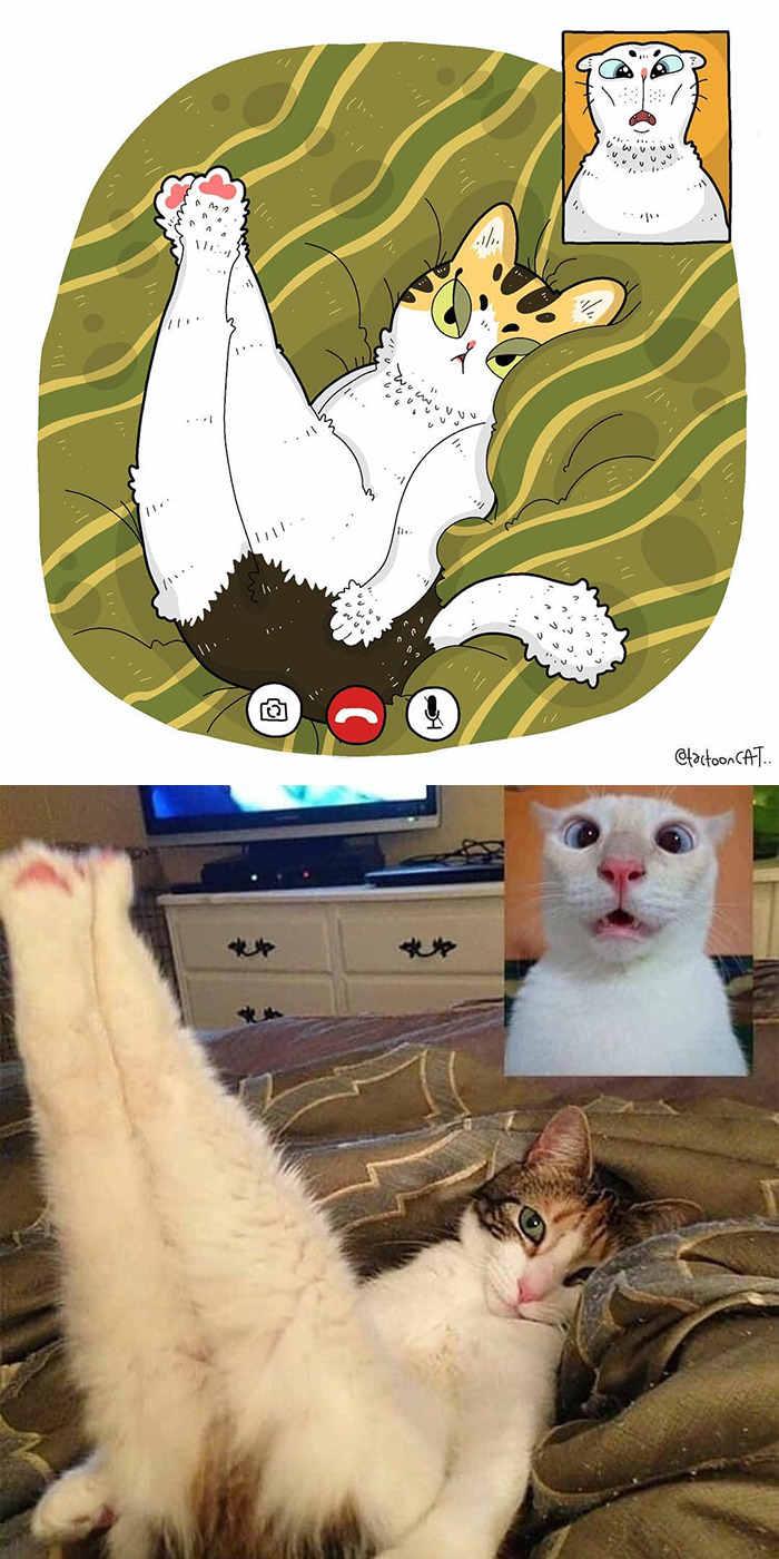 Sering jadi Korban Meme, 10 Gambar Kucing dalam Bentuk Kartun