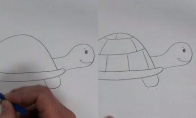 Hanya 10 Langkah, Cara Menggambar Kura-Kura