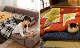 Keunikan Kotatsu, Meja Penghangat Khas Jepang untuk Musim Dingin